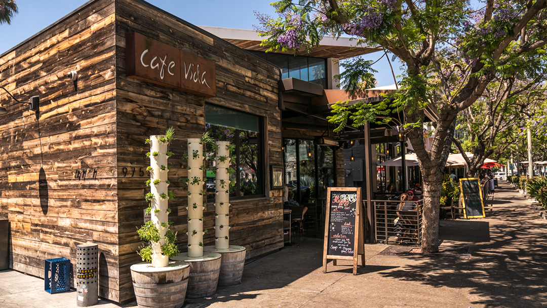 Cafe Vida Culver City Restaurant Review Zagat